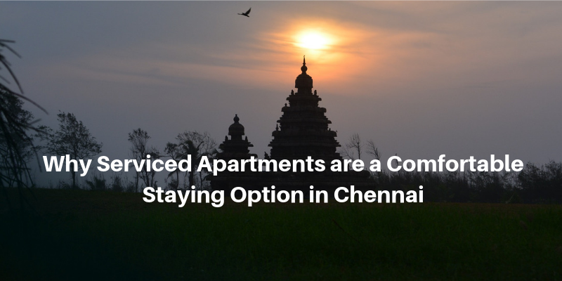 Why Serviced Apartments are a Comfortable Staying Option in Chennai